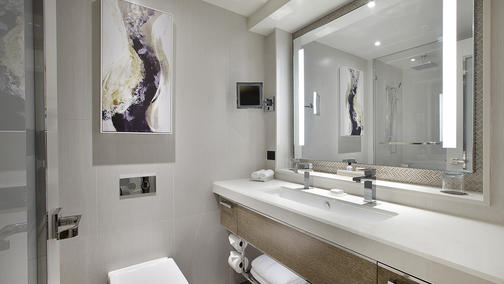 Superior Deluxe Room Bathroom.jpg